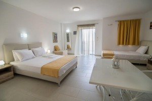 apartment sarti Platania House